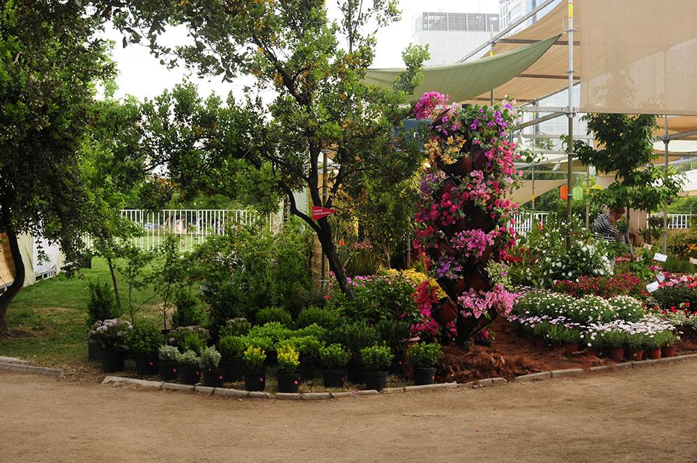 Participacion en Feria Jardinera Stgo 2013 de Vivero Multiplant