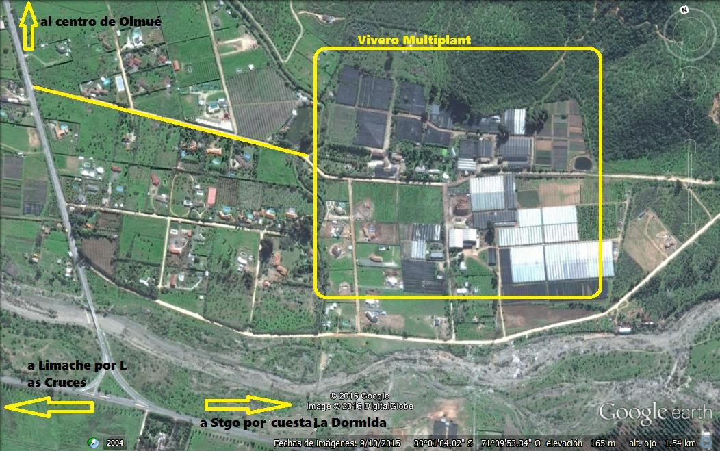 centro de produccion vivero multiplant olmue 2